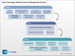 Code IAM Services advise plan deliver identity management consulting